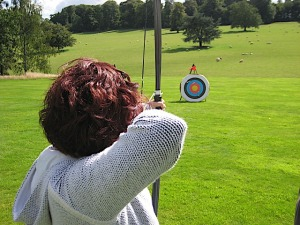 bows-and-arrows-650474_640(1)