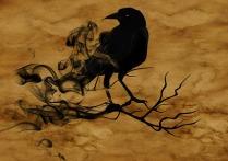 raven-1002849_640