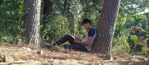 Writing near a tree