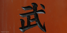 Japanese Character for Warrior