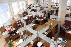 business workers in office cubicles