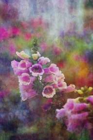 Pink flowers on impressionist background