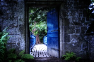 Door opening onto a colorful scene