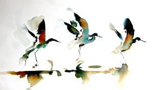Watercolor of three water birds taking flight
