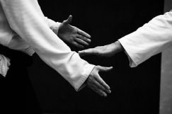 hands of Aikido martial artist